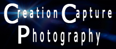 Creation Capture -